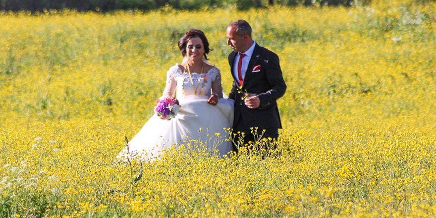 Yüksekova Düğünleri (24-25 Mayıs 2017)