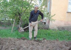 Yabani Ağaçları Aşılayıp 22 Çeşit Meyve Yetiştirdi