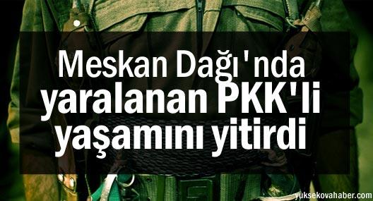 Meskan Dağı'nda yaralanan PKK'li yaşamını yitirdi