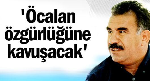 İsveç ÇevrePartisi Yeşiller Milletvekili Mehmet Kaplan: Öcalan özgür olacak