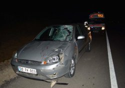 Otomobil Ata Çarptı: 4 Yaralı