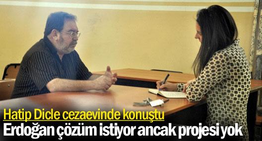 Hatip Dicle: Erdoğan çözüm istiyor ancak projesi yok