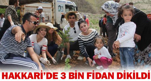 Hakkari'de 3 Bin Fidan Dikildi