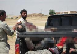 BDP Serêkaniyê katliamını kınadı