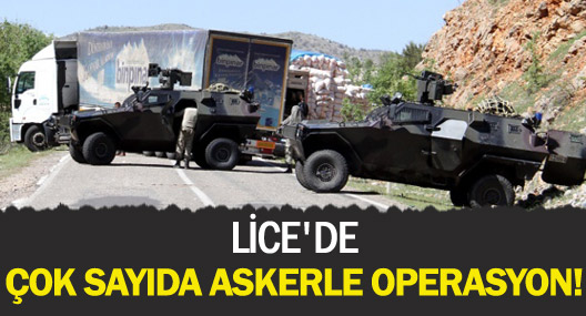 Lice'de çok sayıda askerle müdahale yapılıyor