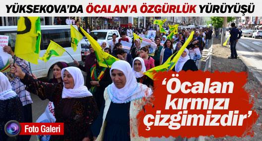 Yüksekova'da 'Öcalan'a özgürlük' yürüyüşü