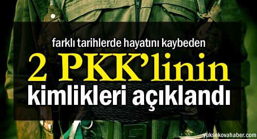 Yaşamını yitiren iki PKK'linin kimlikleri açıklandı