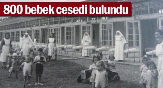 800 bebek cesedi bulundu