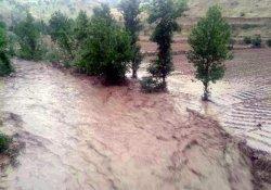 Şiddetli Yağış Sonucu Dereler Taştı