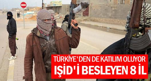 IŞİD'e Türkiye'den Katılımın yoğun olduğu iller