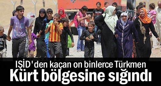 IŞİD'den kaçan on binlerce Türkmen Kürt bölgesine sığındı