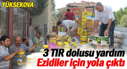 Yüksekova'daki 3 TIR dolusu yardım Ezidiler için yola çıktı