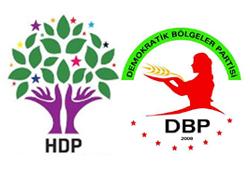 Bingöl'de DBP ve HDP eşbaşkanları gözaltına alındı