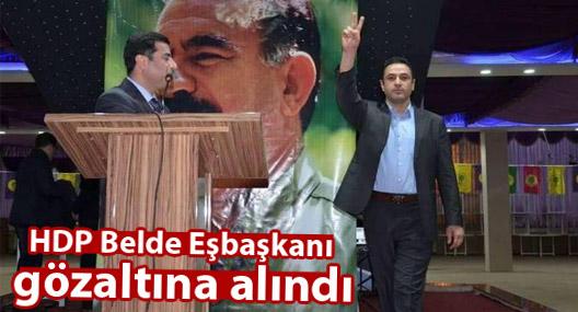 HDP Belde Eşbaşkanı gözaltına alındı