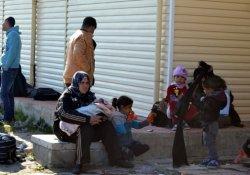 120 Suriyeli göçmen yakalandı