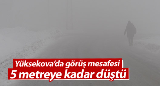 Yüksekova'da sisli hava hayatı olumsuz etkiliyor