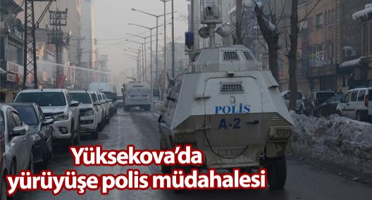 Yüksekova'da yürüyüşe müdahale