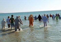 Hayvanlar için denize girdiler