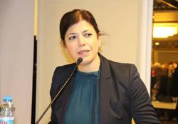 HDP'li Beştaş: Kırmızı çizgiyi aştık