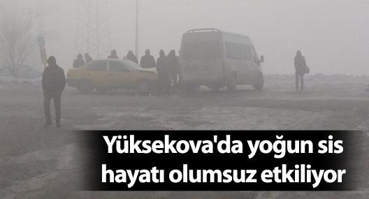 Yüksekova'da yoğun sis hayatı olumsuz etkiliyor