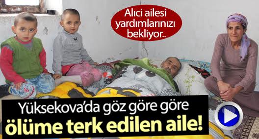 Yüksekova'da ölüme terk edilen Alıci ailesi yardım bekliyor
