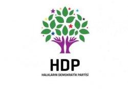 HDP yöneticisi gözaltına alındı
