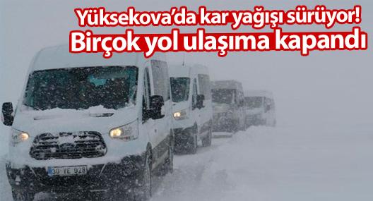 Yüksekova'da kar yağışı sürüyor! Birçok yol ulaşıma kapandı