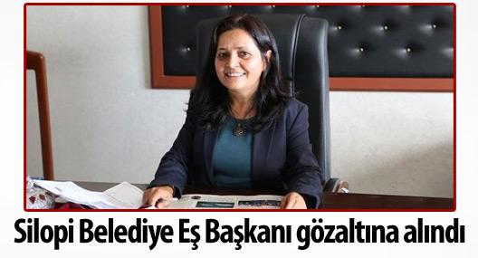 Silopi Belediye Eş Başkanı gözaltına alındı