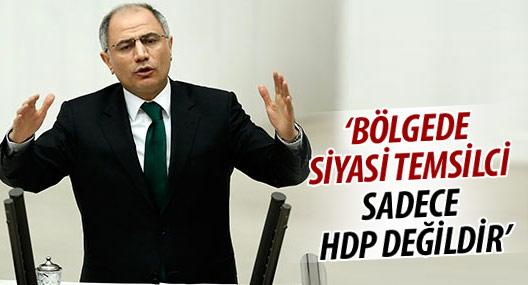 Efkan Ala: Bölgede siyasi temsilci sadece HDP değildir