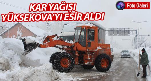 Kar yağışı Yüksekova'yı esir aldı