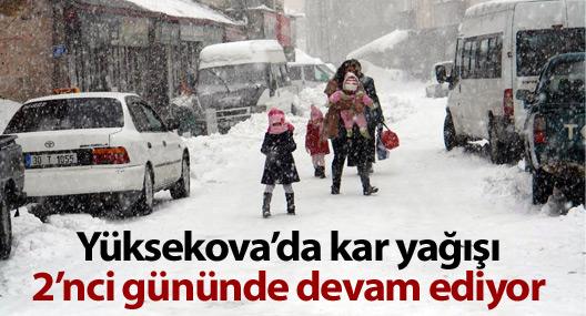 Yüksekova'da kar yağışı 2'nci gününde