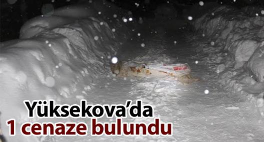 Yüksekova'da 1 cenaze bulundu