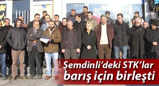 Şemdinli'deki STK'lar barış için birleşti