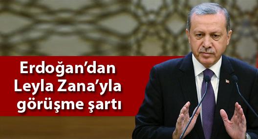 Erdoğan'dan Zana'yla görüşme şartı