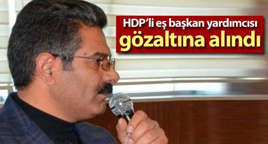 Erciş Belediye Eşbaşkan Yardımcısı gözaltına alındı