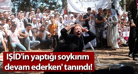 IŞİD'in yaptığı soykırım 'devam ederken' tanındı!