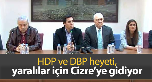 HDP ve DBP heyeti, yaralılar için Cizre'ye gidiyor