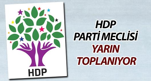 HDP Parti Meclisi yarın toplanıyor