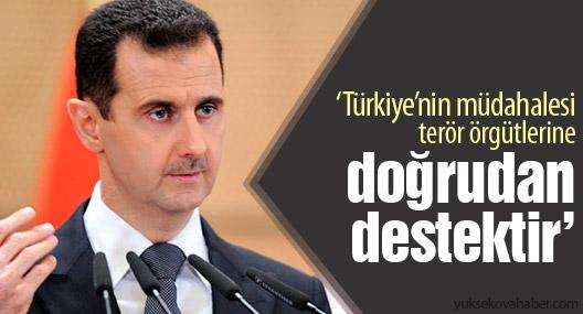 'Türkiye'nin müdahalesi terör örgütlerine doğrudan destektir'