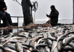 Van Gölü'nde zevkli balık avı
