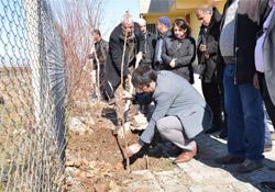 Diyarbakır'da 'her eve iki meyve fidanı' projesi