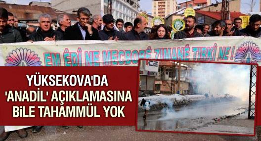 Yüksekova'da 'Anadil' açıklamasına polis müdahalesi