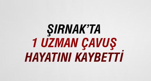 Şırnak'ta 1 uzman çavuş hayatını kaybetti