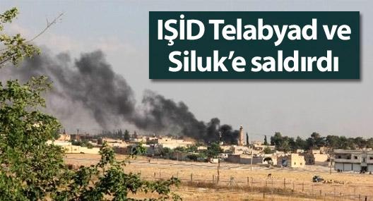 IŞİD Telabyad ve Siluk'e saldırdı