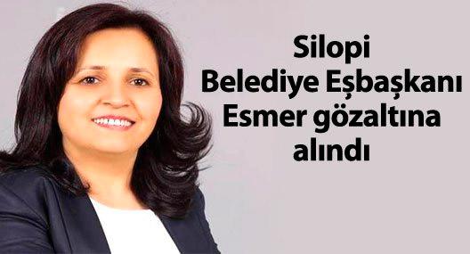 Silopi Belediyesi Eşbaşkanı Esmer gözaltına alındı