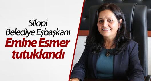 Silopi Belediye Eşbaşkanı Esmer tutuklandı