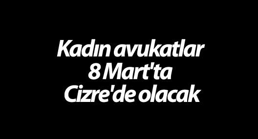 Kadın avukatlar 8 Mart'ta Cizre'de olacak
