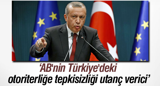 Independent yazarı: AB'nin Türkiye'deki otoriterliğe tepkisizliği utanç verici