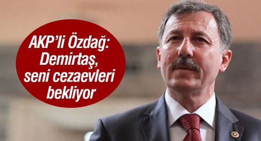 AKP'li Özdağ: Demirtaş seni cezaevleri bekliyor