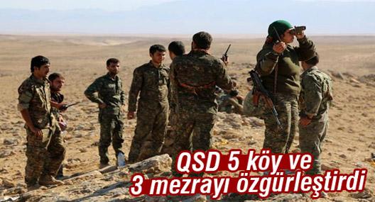 QSD 5 köy ve 3 mezrayı özgürleştirdi